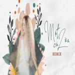 Download nhạc Một Cú Lừa (Remix) Mp3 trực tuyến
