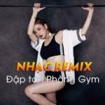 Download nhạc hay Nhạc Remix - Đập Tan Phòng Gym online