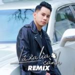 Tải bài hát hay Lá Xa Lìa Cành Remix trực tuyến