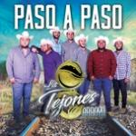 Tải nhạc Mp3 Paso A Paso (Single) online