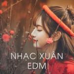 Tải nhạc hay Nhạc Xuân EDM Mp3 online