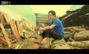 Tải nhạc hình mới Phim Ca Nhạc: Đám Cưới Nghèo nhanh nhất