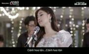 Tải nhạc hình Cánh Hồng Phai mới online