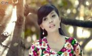 Chuyện Vườn Sầu Riêng | Xem video nhạc nhanh