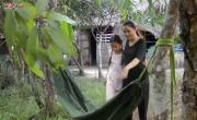 Tải nhạc hình mới Về Thăm Quê Mẹ online